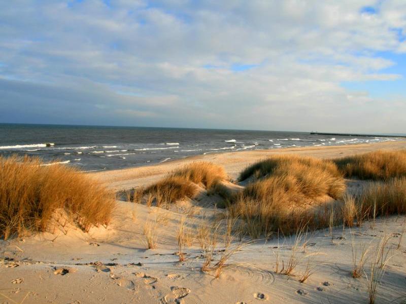 Plaża w Grzybowie